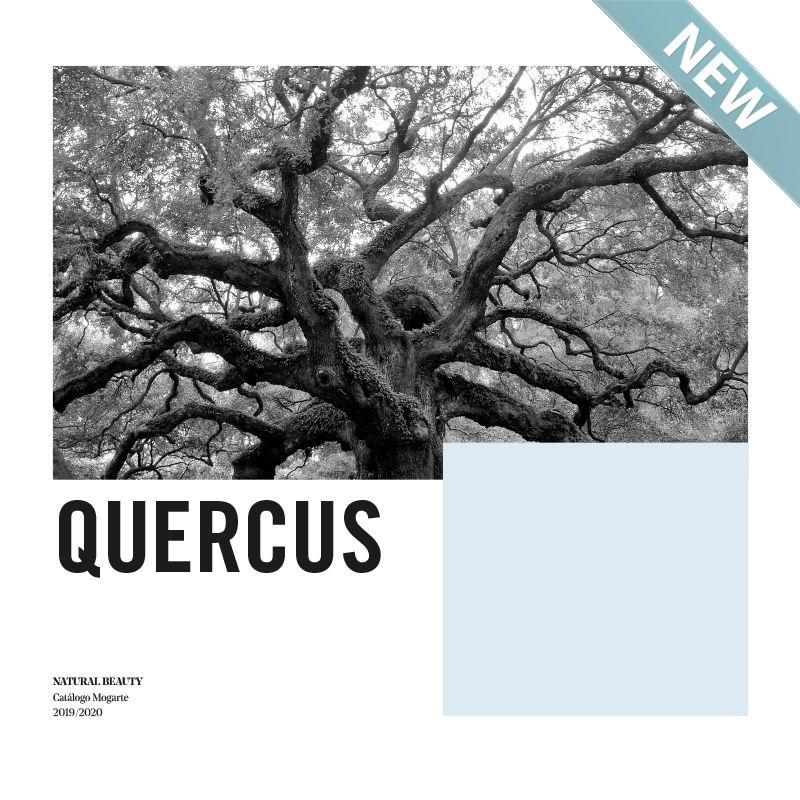 portada-quercus